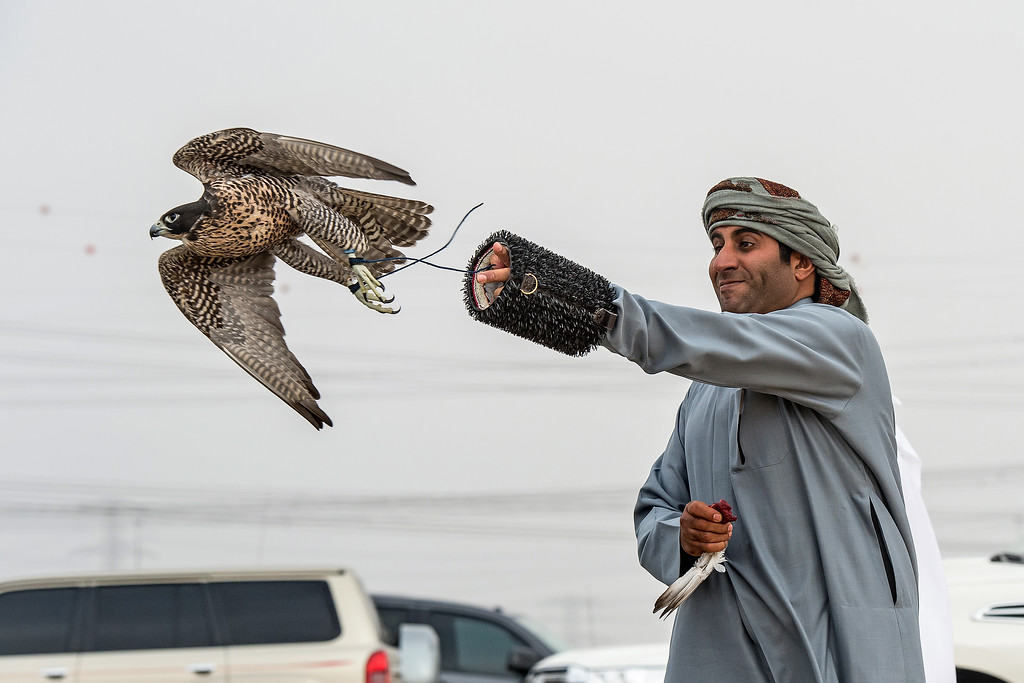 F3 R - Suhail Al Kindi